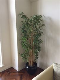 Faux Bamboo Tree in black ceramic pot....Like new condition. This a well made and full tree, unlike others.  Made by Preferred Plants