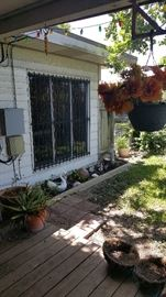 plants, pots and outdoor items
