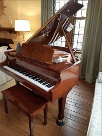 Baby Grand Cristofori player piano - $4000