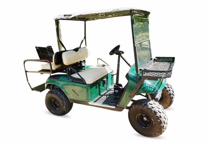 3. EZ GO L100 Golf Cart