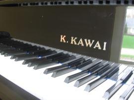 K. Kawai closeup