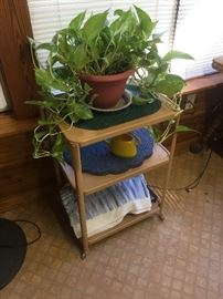 Utility table and plants