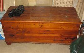 nice old cedar trunk