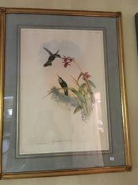 Gould Print