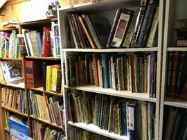 Lots and lots of childrens books.  There are more on the other side.  This is an actual room.