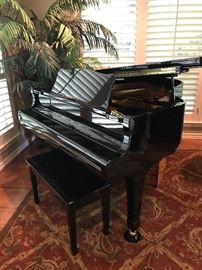 """Young Chang Baby Grand, Model G175, 5'9"""", Mint condition, used very little."""