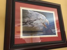 Beautiful eagle pic