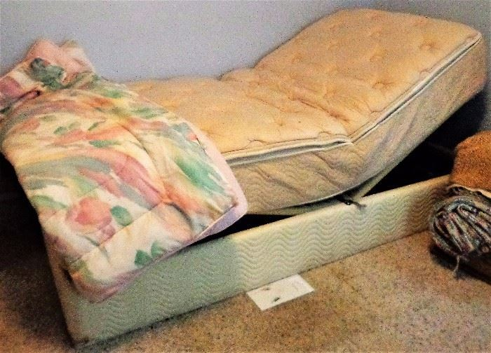 Twin Adjustable Bed w/Dreamwell Mattress