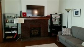 """two 42"""" HDMI flat screen televisions, book cases, lamps, artwork..."""