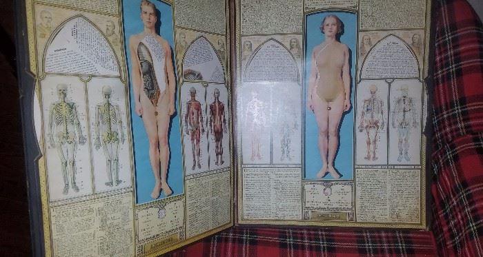 Interior of body scope book