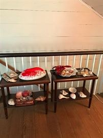 Lobster dishes and great shell collection