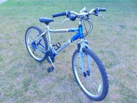 Next Aluminum Frame - Mens - 21 speed - Index with Power Stroke