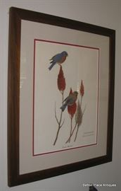 Framed prints all signed