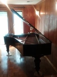 1877 Carl  Bechstein Baby Grand Piano
