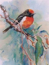robin square crop