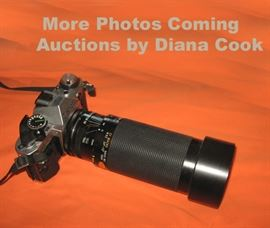Diana Cook Auctions, Estates and Appraisals