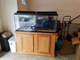 aquarium, stand and all accessories