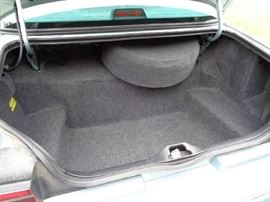 Spotless trunk & spare cover