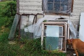 Antique auto windows on left, barn window frames on right. Dog not for sale, but she needs treats.