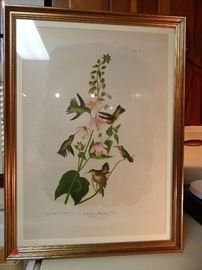 "Artist: John James Audubon-J. Bien Edition, ""Columbian Hummingbird"", Chromolithograph"