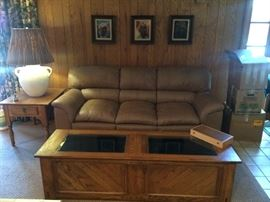 Display and Storage Coffee Table;  Leather Sofa and side table