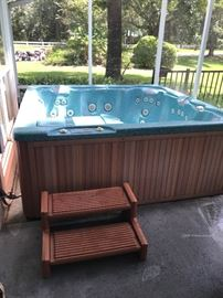 4 person Jacuzzi Tub - Buyer must be able to remove screen and beam from screened in porch and put back up to get the tub out.  Tub is in excellent working condition, Looks good too - Needs a new cover.  Simply hook up the electric and fill with a hose. $200