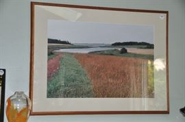 "Beautiful framed photograph 30""W x 23""L"