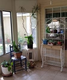 Potted Plants, Chairs, End Table, Baker's Rack