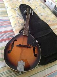 Fender Mandolin (hardly used) with soft case $ 180.00