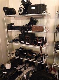 Many vintage cameras