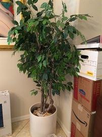 Artificial Tree $50 OBO