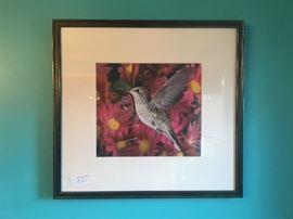 Hummingbird framed photo