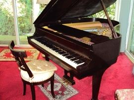 Steinway Baby Grand - Parlor Grand Piano
