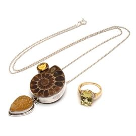 10K Yellow Gold and Citrine Ring and Ammonite, Druzy and Citrine Necklace: A necklace with an ammonite specimen accented by Druzy and Citrine stones in a sterling silver setting, plus a 10K citrine and diamond ring.
