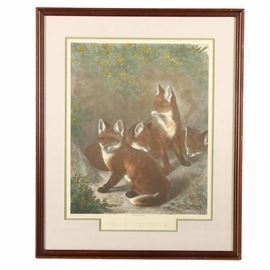 """Hand Colored Offset Lithograph After Samuel John Carter's """"Young Freebooters"""": A hand-colored offset lithograph print on paper after an engraving by Alfred Lucas created after an 1880 work by listed British artist Samuel John Carter (1835 – 1892). The piece, titled Young Freebooters, depicts a group of four fox kits at the entrance of their den, which is covered in greenery and yellow flowers. The image is signed and dated in plate within the image to the lower right, with the title printed to the lower center. It also includes printed notations to the lower margin of """"Painted by Samuel Carter"""", """"Engraved by Alfred Lucas"""" and """"Published by Old World Prints Ltd"""". The print is double-matted in pale green under cream linen and presented under glass in a wooden frame with hanging wire to the verso."""