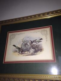 """""""Chaffinch"""" - another framed bird picture"""