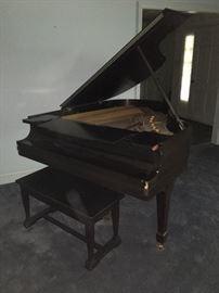 piano, steinway