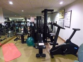 Exercise Equipment Room, , Bicycle, Stepper,  and Precor Treadmill.      THE VECTRA UNIVERSAL GYM AND THE RECUMBANT BIKE ARE SOLD.