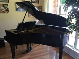 Yamaha Full Size Grand Piano