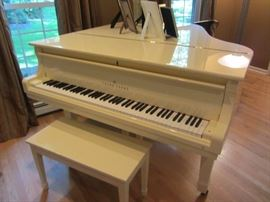 YOUNG CHANG BABY GRAND PIANO Available Now! Call Brenda with interest 973-418-1286