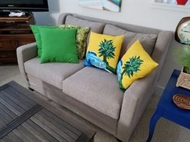 Love Sofa and Decorator Pillows
