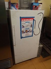 GE Upright Single-Door Reach-In Freezer (#5207)