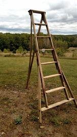 "8"" tripod orchard ladder"