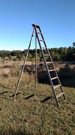 9' and 10' orchard ladders with swivel bracket so back legs are adjustable and can rotate around objects
