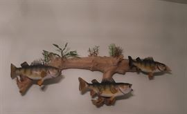 Mounted fish on driftwood