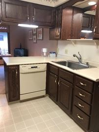 Dish Washer in working order, great kitchen cabinets, sink and counter top!