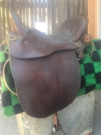 Tucker saddle