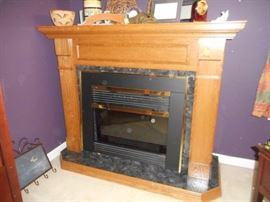 Free Standing Fireplace with Electric Insert