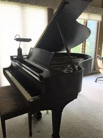 Steinway Model O Living Room Grand Piano - 1920's
