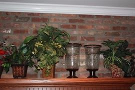 Plants and Decorative Hurricane Lamps